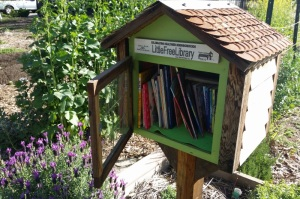 LittleLibrary_20150325_094500